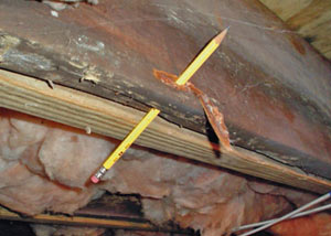 Destroyed crawl space structural wood in Rincon