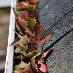 Clogged gutters filled with fall leaves  in Reidsville